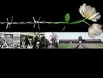 holocaust_thmb