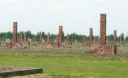 Руины лагеря Аушвиц-Биркенау. Фото: Википедия