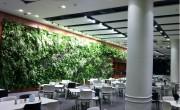green_wall_indoor_4