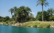 800px-Gan_Hashlosha_National_Park_Pool1_200704