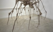 SPIDER COUPLE, 2003