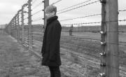 Auschwitz II-Birkenau.....
