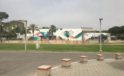 tzeva_tari_1
