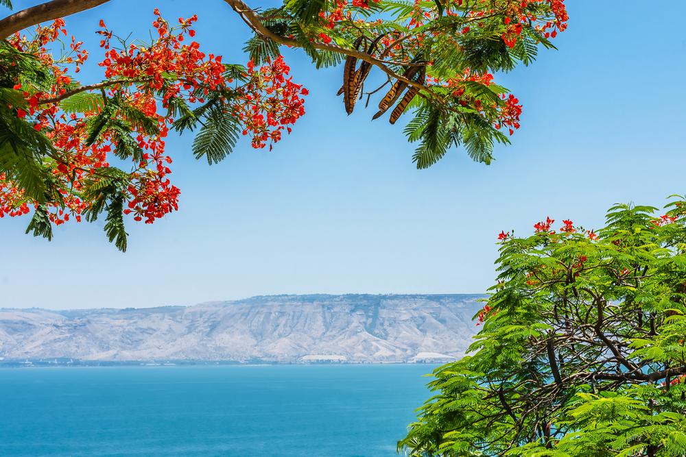 View of the Sea of Galilee, Tiberias, Israel