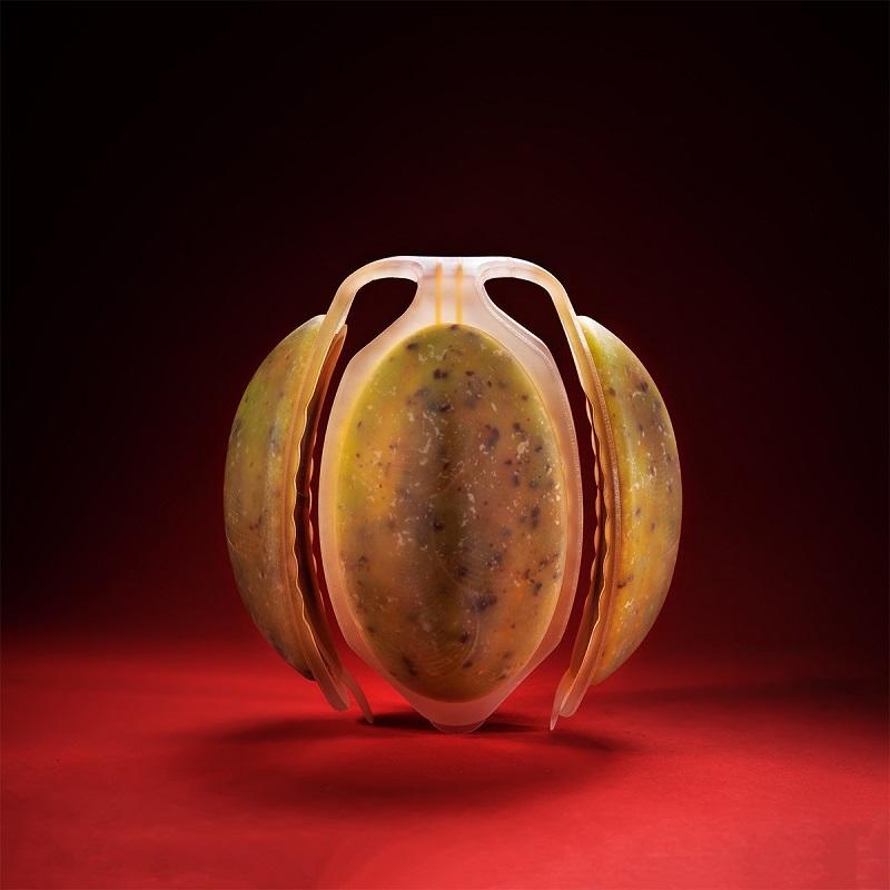 Мейдан Леви «Нео фрукт»