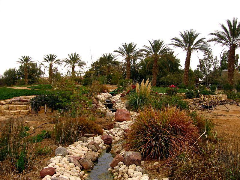Неот Смадар - подлинный оазис посреди пустыни